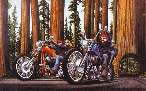 Redwoods by David Mann